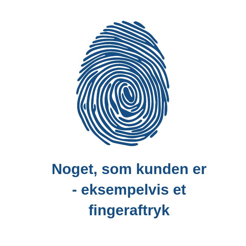 Regler for online betaling Fingeraftryk