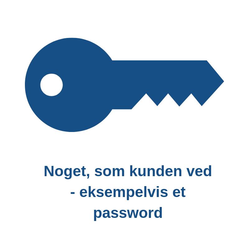 Regler for online betaling Password
