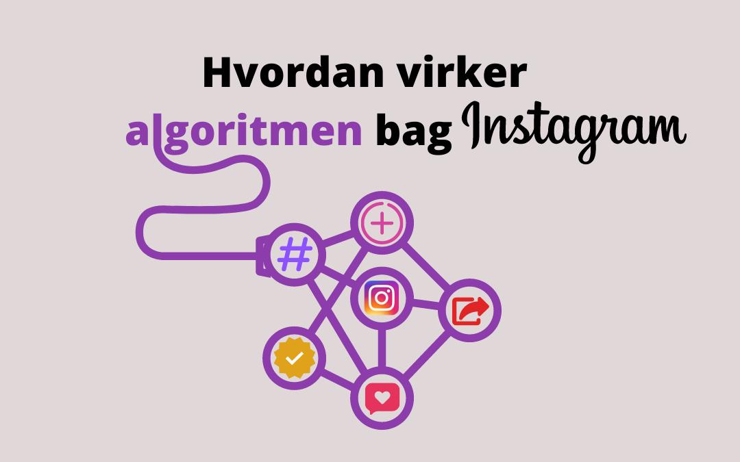 Hvordan virker algoritmen bag Instagram